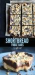 long pin shortbread fudge bars