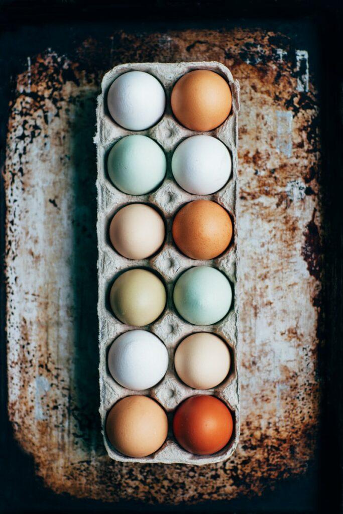 food allergy - eggs