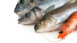 Fish & Shellfish Allergy 101