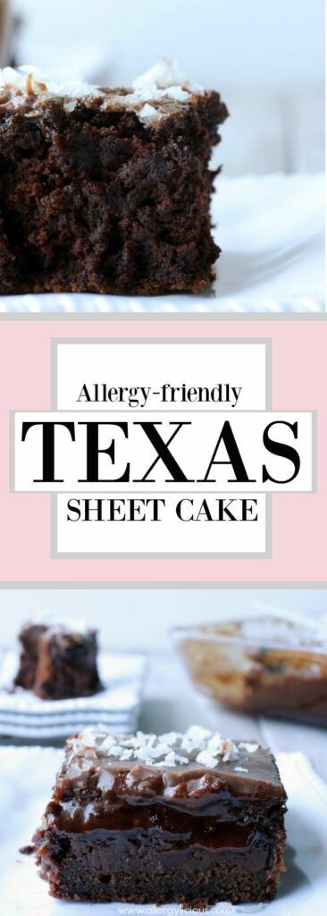 Deliciously moist, fudgy & chocolaty Texas style sheet cake