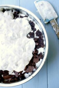 Wow your friends with this homemade Brookie Ice Cream Cake (allergy-free)