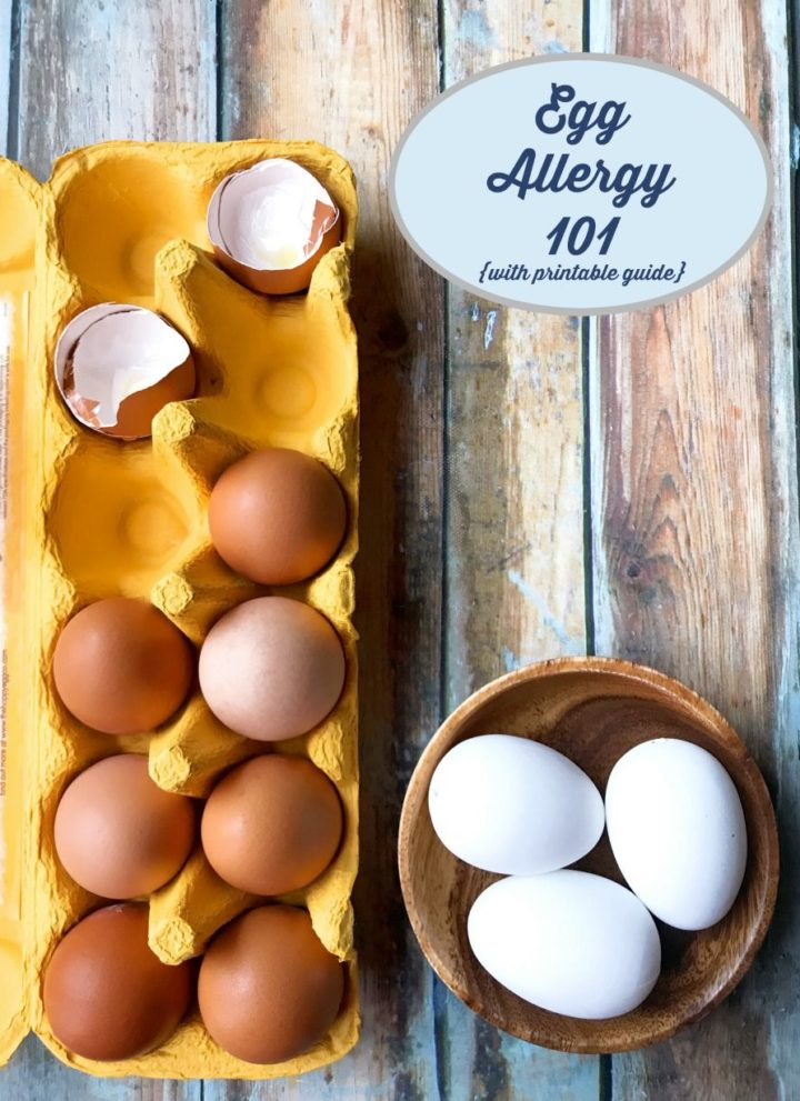 Egg Allergy 101 {tips & printable guide}