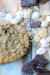 Vegan + Gluten-free Compost Cookies