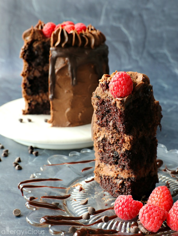 Slice of chocolate raspberry cake