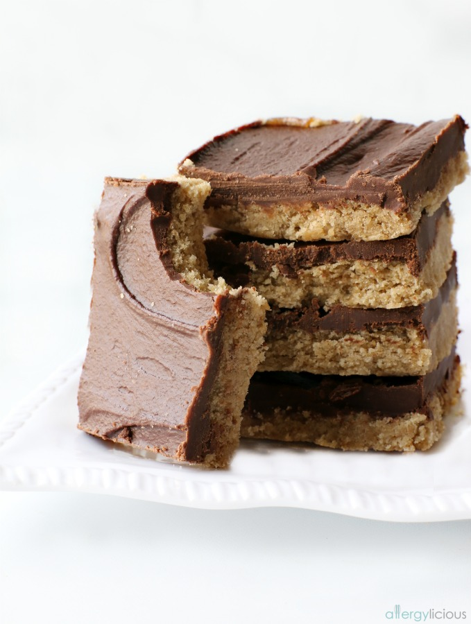 Chocolate SunButter Bars {Top 8 free, Vegan, Gluten-Free}