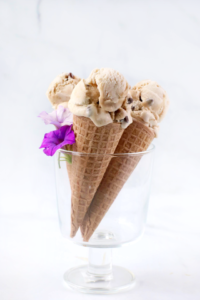 Vegan Coconut Chocolate Chip Ice Cream
