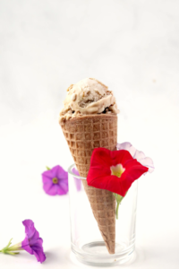 single cone of chocolate chip ice cream