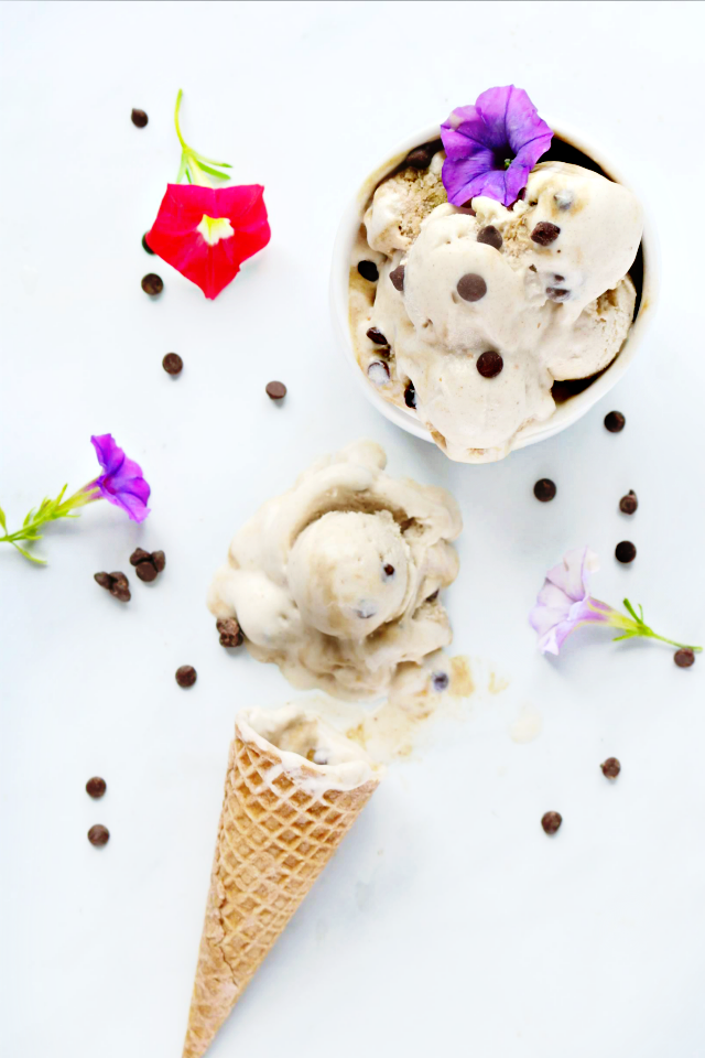 frozen chocolate chip ice cream