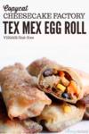 Tex Mex Egg Roll Short Pin
