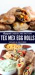 Crispy, crunchy, loaded Tex Mex Egg Rolls long pin