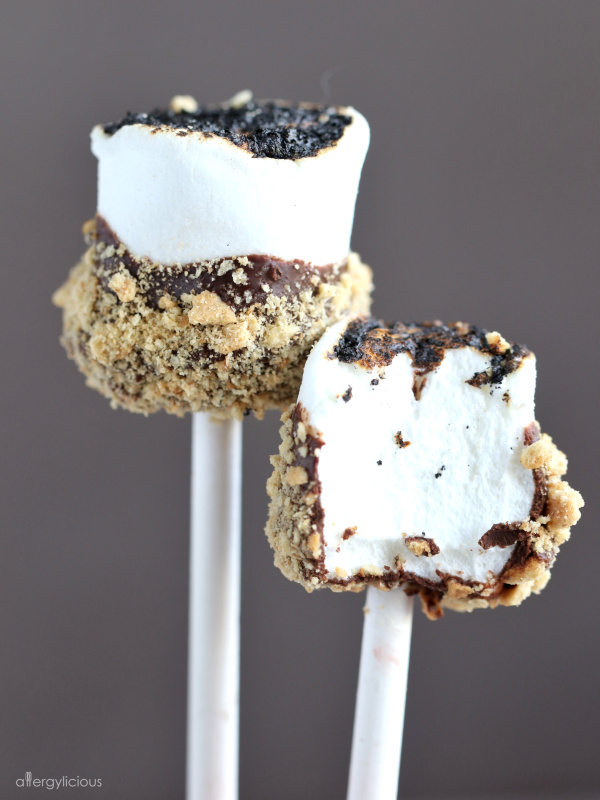 delicious vegan s'mores pop