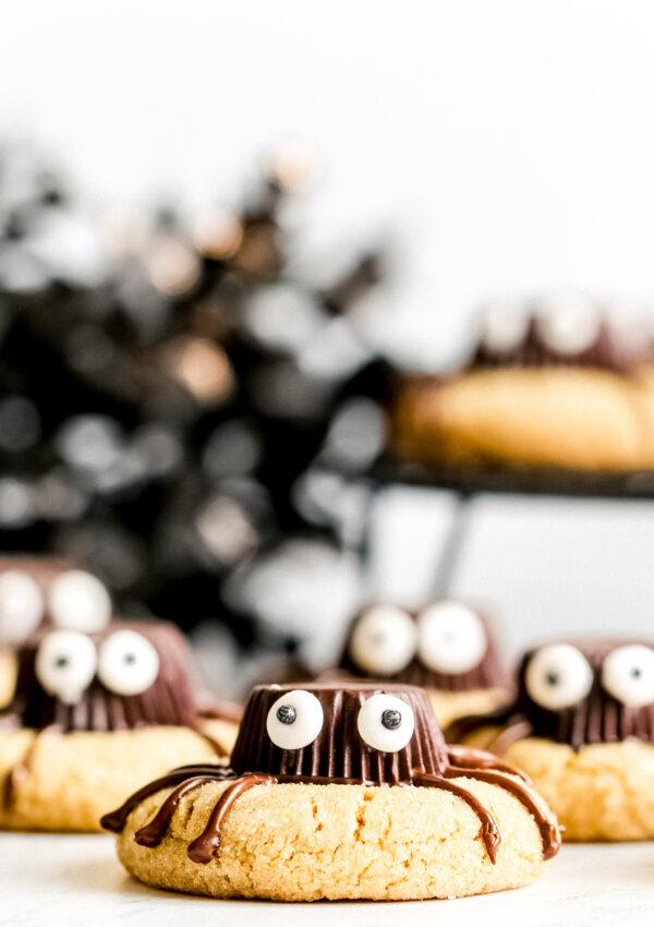 Spooky Halloween Spider Cookies (vegan, nut free)